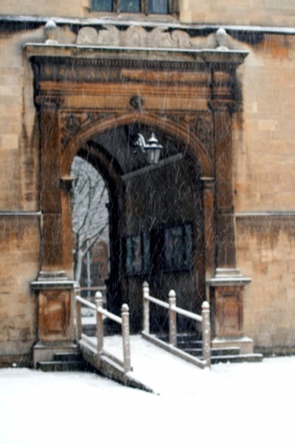 Caius in Snow - Photo 8