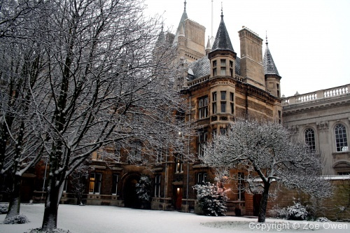 Caius in Snow - Photo 16