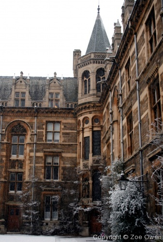 Caius in Snow - Photo 18
